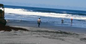beach job a